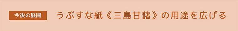 【今後の展望】うぶすな紙≪三島甘藷≫の用途を広げる
